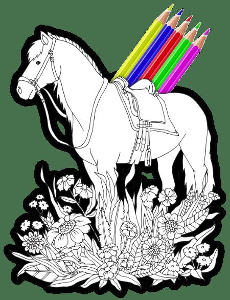 Malbuch für Erachsene Pferd zum Ausmalen